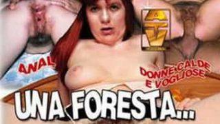 Una Foresta Tra Le Coscie Porno Italiani Streaming