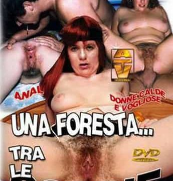 Una Foresta Tra Le Coscie Porno Italiani Streaming